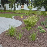 Brown Colored Mulch4