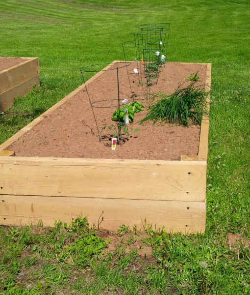 Raised Garden Bed (3)
